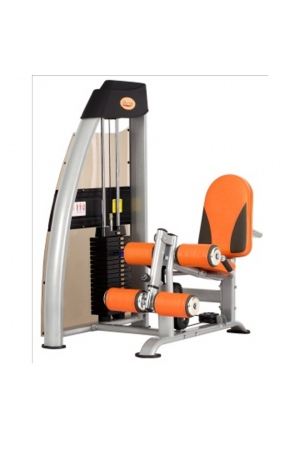 may-tap-gym-DL-2618