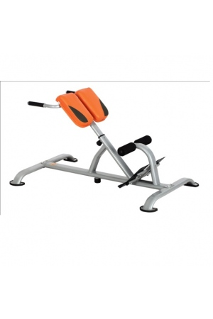 may-tap-gym-dl-2631