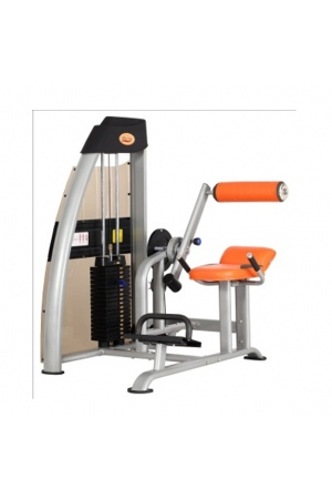 may-tap-gym-DL-2624